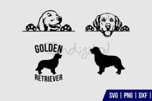 Golden Retriever SVG